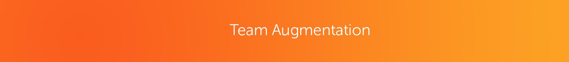 Team augmentation The MangoTech